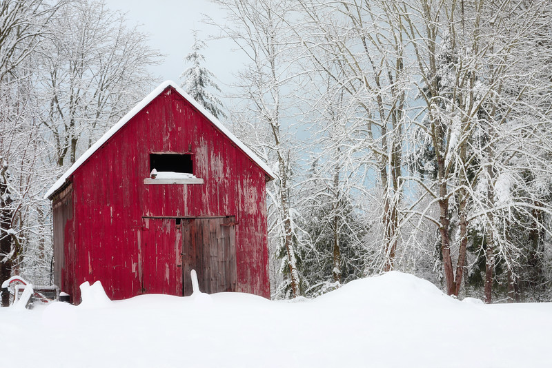 ~The Little Red Barn~