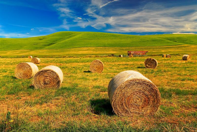 Hay Rolls on a Palouse Farm