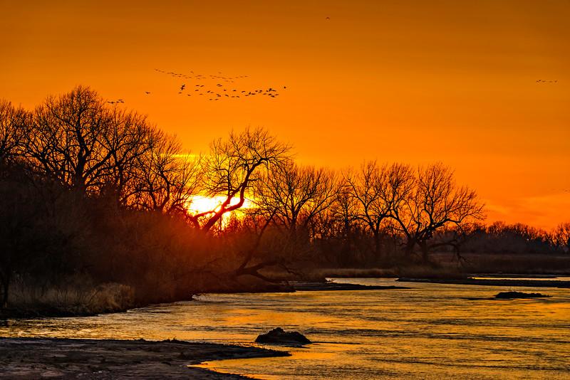 First Light Dawn Patrol Over Platte-CranesNE_2014Mar19_2878