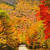HighwayOfFlamingFoliage-D700_1605_DxO (1)