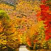 HighwayOfFlamingFoliage-D700_1605_DxO