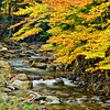 Fall_Color_Stream_LDG6438