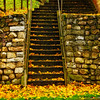 Leaf Covered Staircase-Oct122014_0415