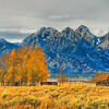 Grand Teton Fall Colors