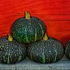 GreenPumpkinsAgainstRedWall_D3X7753_DxO