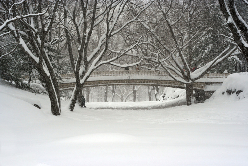 Central Park, Pine Bank Bridge in the Snow