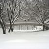 Central Park, Pine Bank Bridge in the Snow