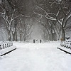 <CENTER>Central Parks Grand Promenade</CENTER>