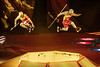Cirque du Soleil CRYSTAL-11