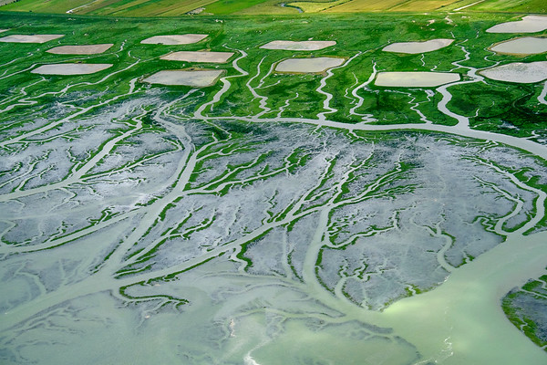 Baie de Somme patterns