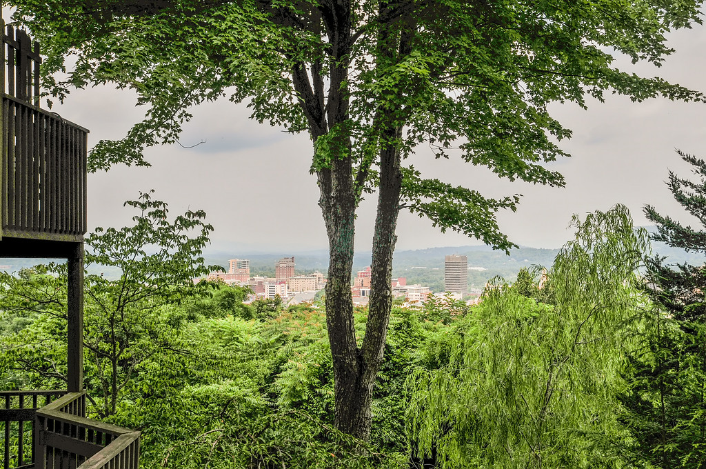 asheville nc skyline through the trees