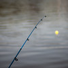 Fishing Pole - bobber floating in lake
