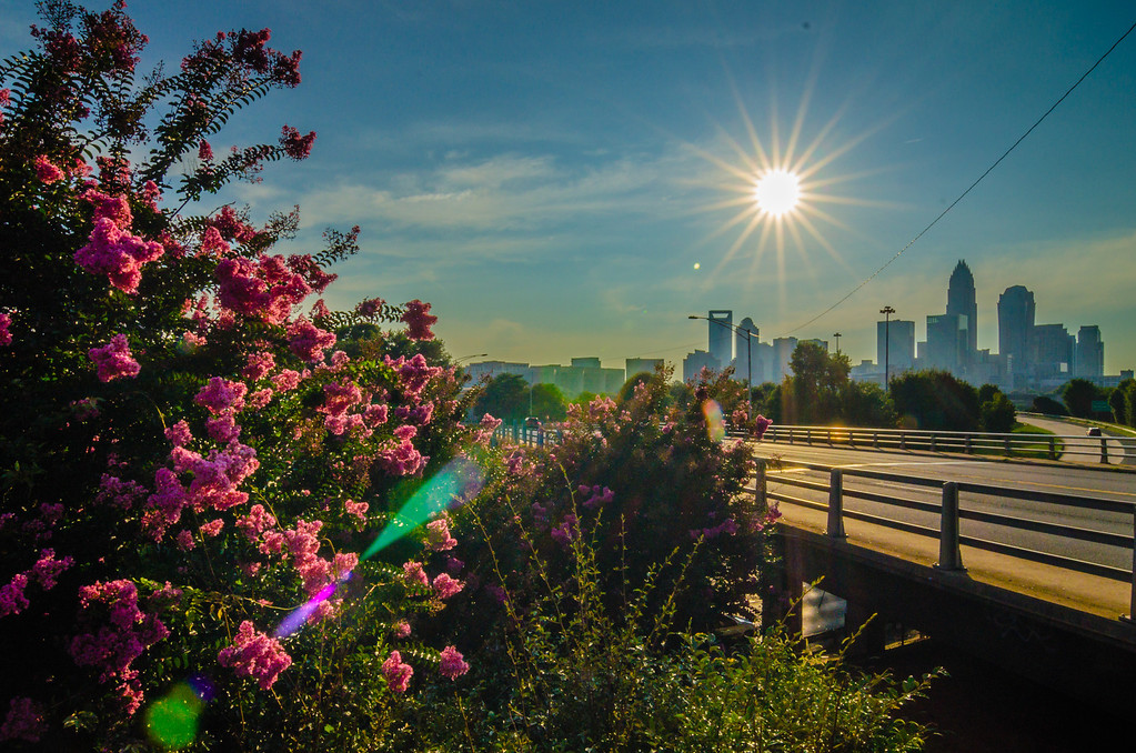 sun setting over charlotte north carolina a major metropolitan city