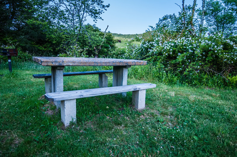 picnic table and grille