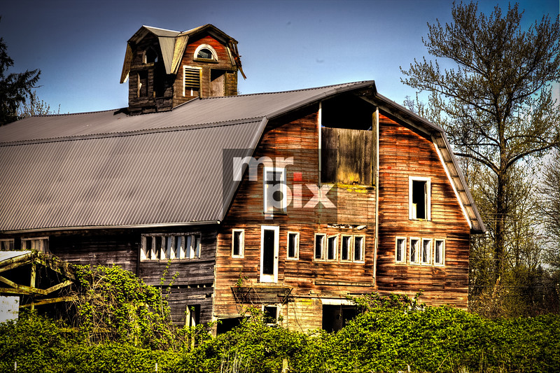 Old Muncey Barn, in the SnoQ Valley - photo: © michael moore - MrPix.com