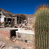 TILCARA. GRAVE YARD WITH CACTUS AND PLASTIC FLOWERS. JUJUY.