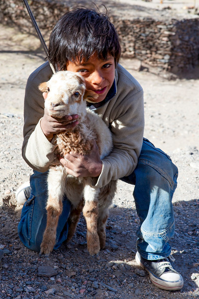 QUILMES. LITTLE INDIAN BOY WITH A SHEEP. PACHAMAMA RITUAL. 1 OF AUGUST.
