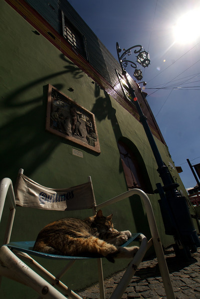LA BOCA. BUENOS AIRES. CLOSE UP OF A CAT SLEEPING IN THE SUN IN A QUILMES CHAIR.