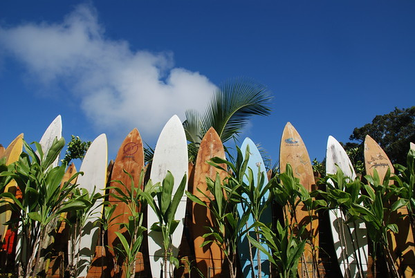 Haiku Surfboard Fence