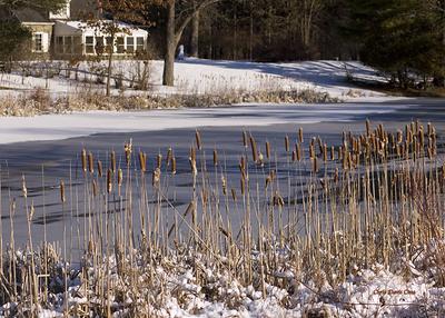 Eleanor Roosevelt's Home in the Winter
