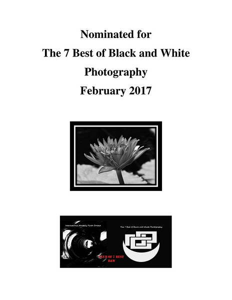 Best Black & White Award