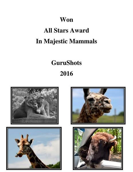 All Stars Award