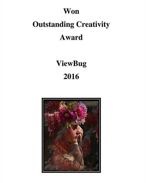 Outstanding Creativity Award