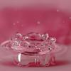 Pink Splash Bowl - Reflected Water Drop