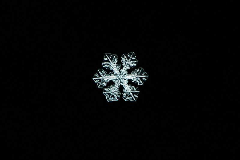 Snow Flake - Falling Diamond