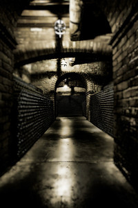 The Cellar Awaits