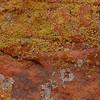 Lichem