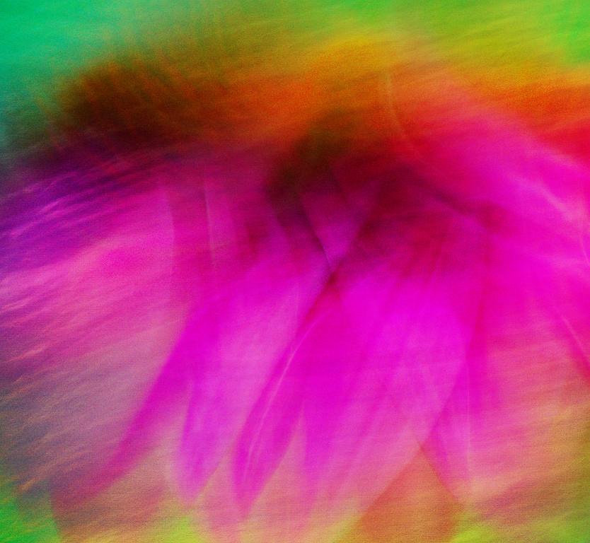 Rush Hour Flower
