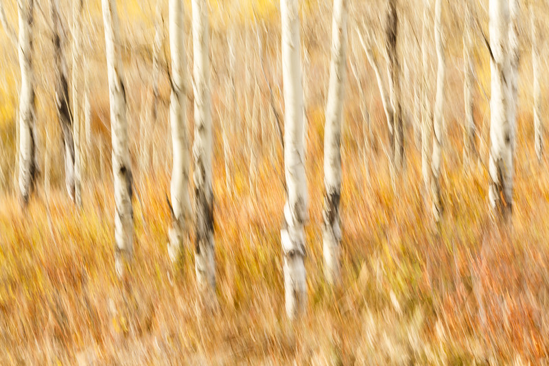 Study In Abstract No. 8, Grand Teton NP