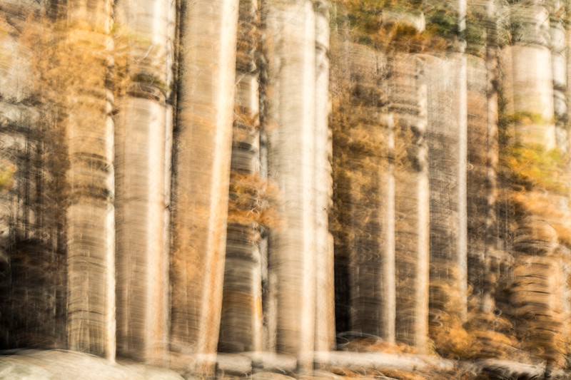 Study In Abstract No. 281, Yellowstone NP