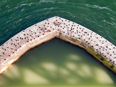 GoldenGate Bridge Detail 11