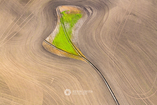 Patterns in the crop fields of the Palouse