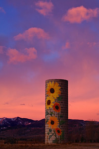 Sunflower Silo