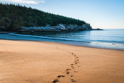 Footsteps on Sand Beach
