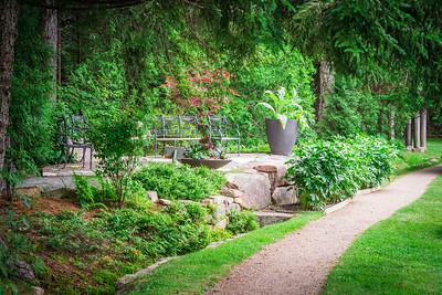 Thuya Garden Pathway