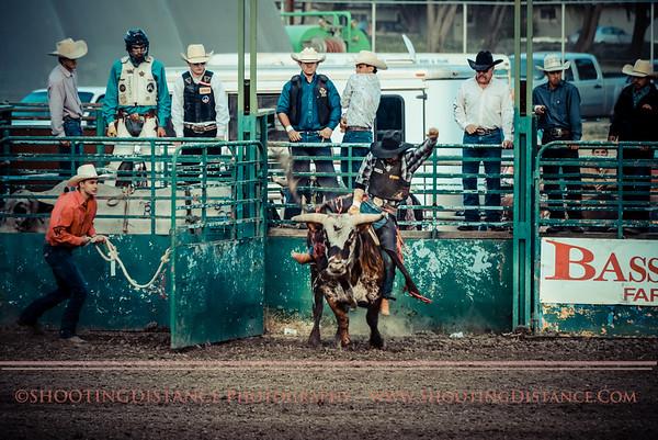 Salinas Valley Fair 2014-Bull Riding athe Running of the Bulls