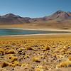 Laguna Miscanti, Atacama Desert, Chile