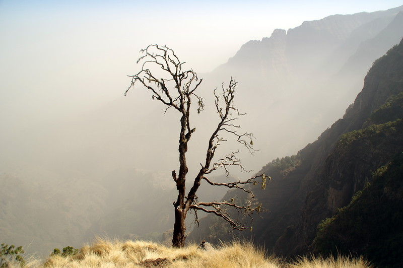 Serene scenery in Simien Mountain Nationalpark, Ethiopia