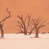 Deadvlei, The Namib Desert, Namibia