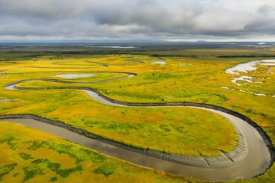 Alaskan Wetland