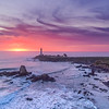 Pigeon Point Lighthouse Sunset