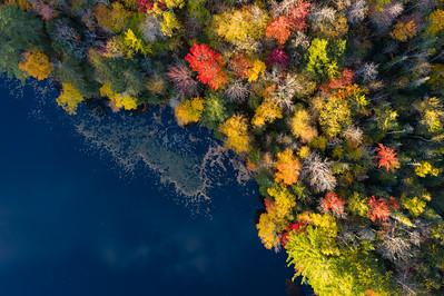 """""""Autumn Jewels"""""""