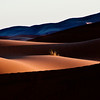 Sahara sunrise shadows