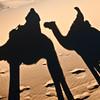 Morocco, Sahara Desert shadows