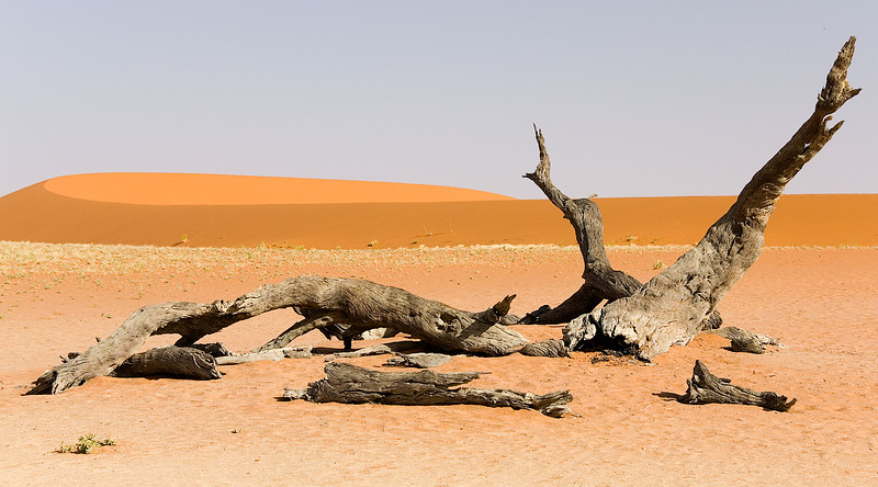 Namib Desert, near Sossusvlei, southern Namibia