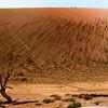 Dune walkers atop giant sand dune, Namib Desert, Namibia